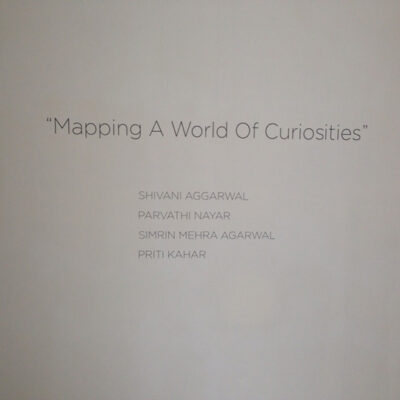 mapping-a-world-of-curiosities-12